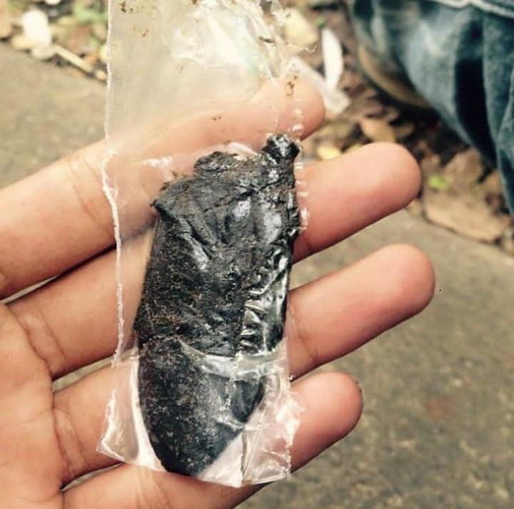 Hashish Made From Indian Landraces