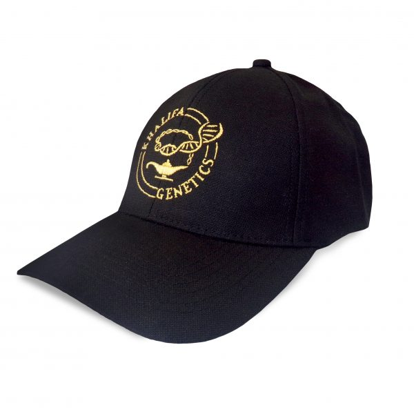 Original Cap Black